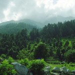Miandam, Swat, a Natural Beauty