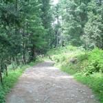 Mushk Puri with a green trek- Abbotabad