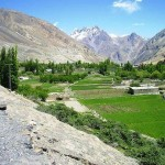 Gojal Valley - Gilgit Baltistan - Greenry Snow Peaks and Flowers