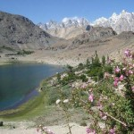 Gojal valley - Borith Lake with Water and Flowers