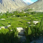 Gojal valley - Green Fields - Snow Mountains what a scene