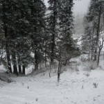 Patriata New Murree - snow after snowfall in winter
