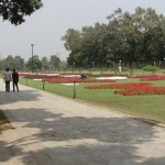Race Course Park Lahore - beautiful flowers view with grassi grounds