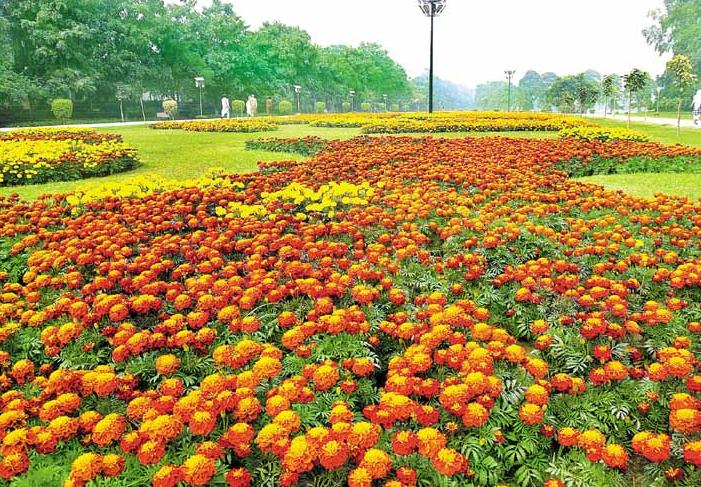 race course park lahore dating 10 reasons why lahore is called the 'city of gardens it in the stretch of circular road between the park and lahore known as race course park.