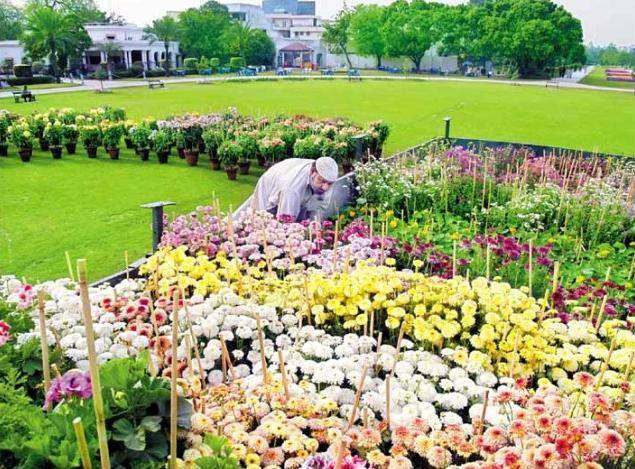 Race Course Park Lahore - preparation for the Spring flower festival in March