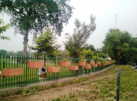 Visit Race Course Park from Lahore