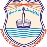 PEC Result 2013 for 8th Class and 5th Class