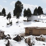 Snowfall in South Waziristan (FATA)