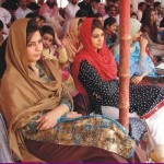 Horse & Cattle Show: Golden Jubilee Festival: Agri University Faisalabad