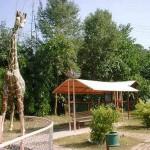Ayub Park Rawalpindi 10