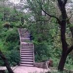 Ayub Park Rawalpindi 7