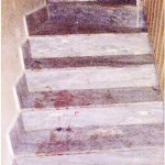 Osama inside House Pics Abbottabad Pakistan - Blood on Stirs