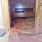 Osama inside House Pics Abbottabad Pakistan - Kitchen