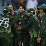 Shahid Afridi 5 Wickets