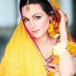 Aisha Linnea Bridal Mehndi 2