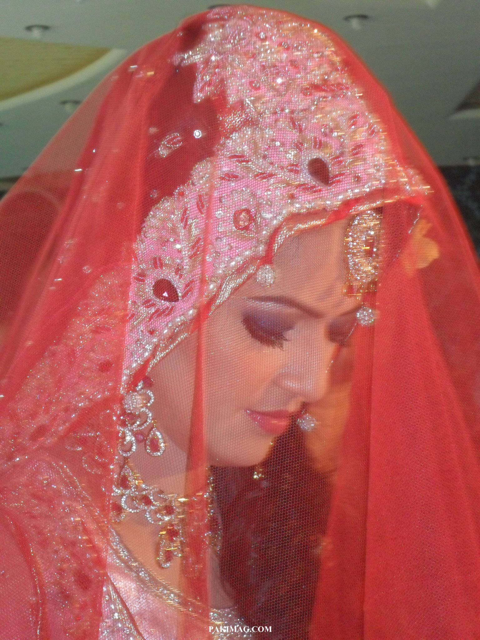 Pictures of ayesha baksh