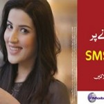 Mobilink Jazz 500 Free SMS To FnF Numbers