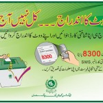 National Voter's Day – A First In Pakistan's History!
