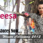Pareesa By ChenOne Winter Collection 2012