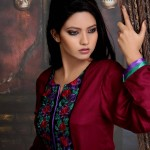 Damak Winter Collection 2