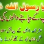 Eid Milad Nabi SMS 4