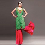 Mohsin Ali Winter Collection 5