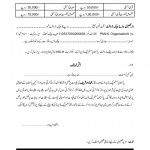 Application Form for Ticket of PML-N in Election 2013 c
