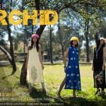 Abraaj Summer Collection 1