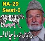 NA 29 Swat PMLN Candidate Muhammad Ali Shah