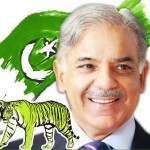 PMLN Punjab Final Candidate List for National & Provincial Assemblies