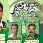 Swat NA 29, NA 30 National Assembly Candidates