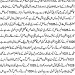 Lahore Board Matric Top Positions in 2013
