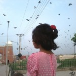 Multan Qilla with flying birds