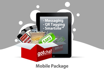 PTA SMS Call Package