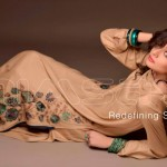Nimsay Winter Collection with Classic Embroidery Work