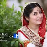 Sanam Baloch Wedding Makeup