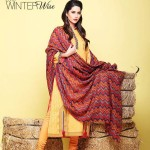 Kayseria Winter Wise - Winter Collection