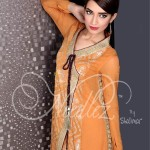 Formal Winter Collection By Needlez By Shalimar