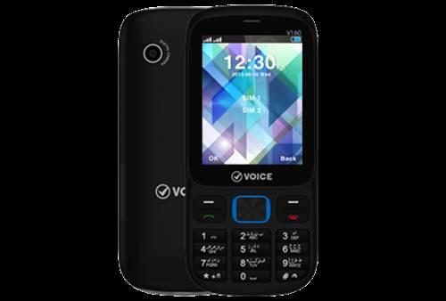 Voice Xtra V160 Price