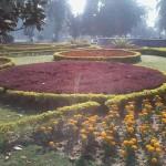 Bagh-e-Jinnah - Jinnah Garden Lahore view