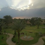 view of Jhandir Library's Lawn after rainfal