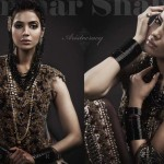 Classic Bridal Outfits Collection 2014 By Ammar Shahid