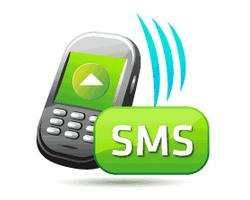 PEC Punjab 5th, 8th Class Result through SMS, Email