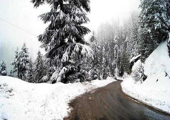 Nathia Gali Snowfall in March 2014