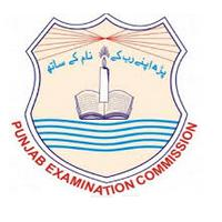 Punjab Examination Commission - PEC Logo