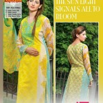Dawood Textiles Summer Lawn Collection 2014 - Alishan Chiffon