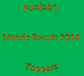 Punjab Matric 2014 Position Holders