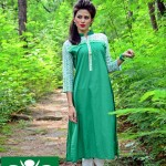 Azadi Dress 2014 Syra Rezvan 6