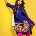 Rang Ja 2014 Winter Dress 1