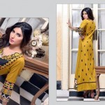 Rujhan Fabric 2014 Winter Dress 3